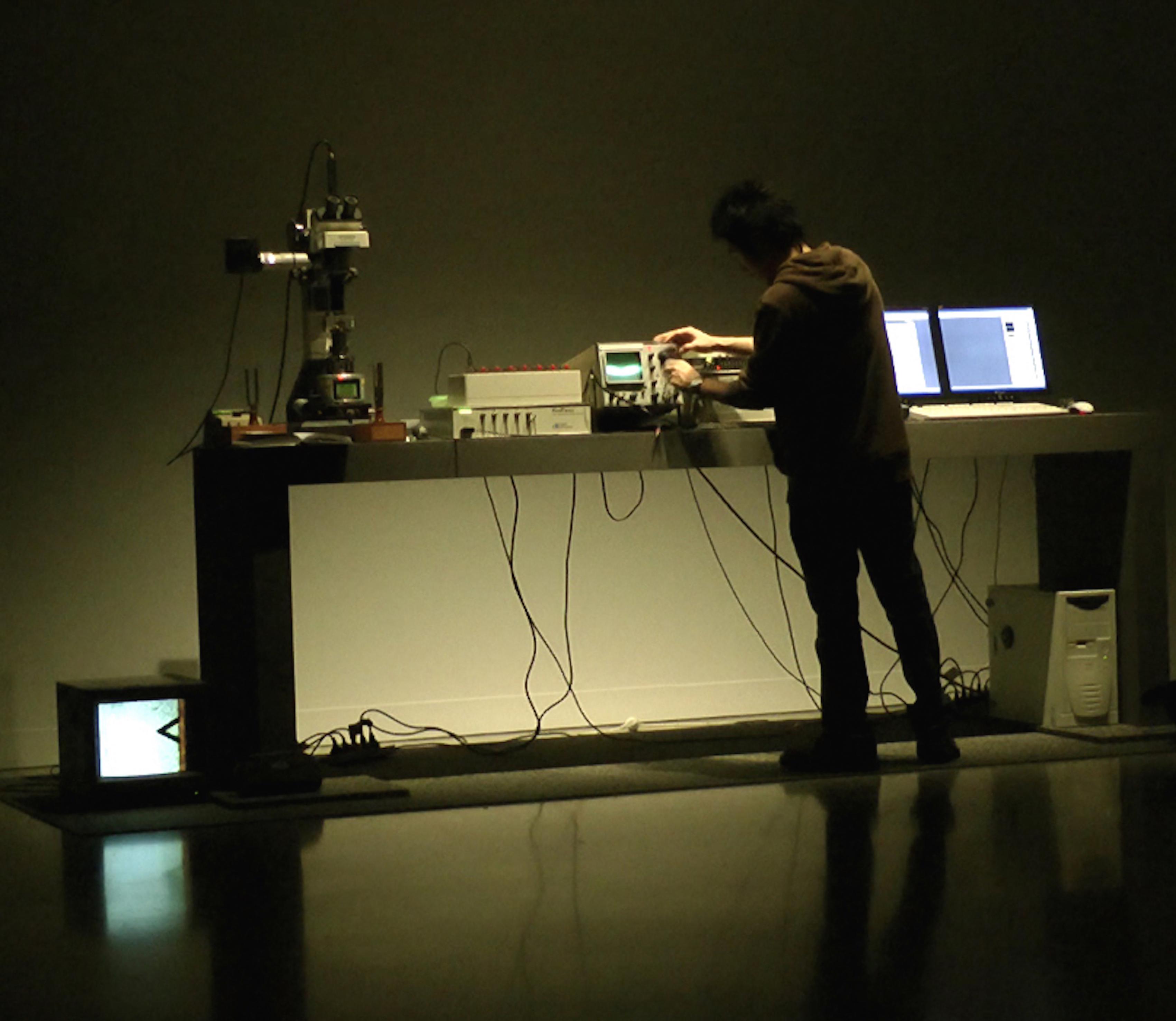 Image from Nanovibracy (2011) by Joel Ong.