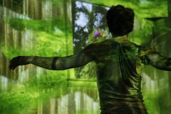 Image from art experience Rallentando.