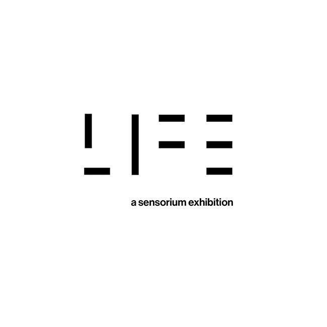 LIFE, A SENSORIUM: ARTIST'S TALK ON ART & VIDEO GAMES